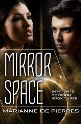 Mirror Space