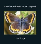 Butterflies and Moths Pour Out Speech