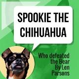 Spookie The Chihuahua