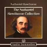 Nathaniel Hawthorne Collection, The