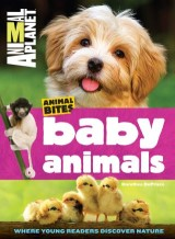 Baby Animals (Animal Planet Animal Bites)