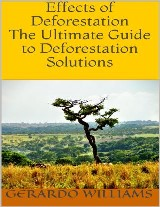Effects of Deforestation: The Ultimate Guide to Deforestation Solutions