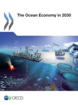 The Ocean Economy in 2030