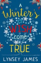 A Winter's Wish Come True