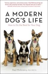 A Modern Dog's Life