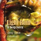 Light Rain in Deep Forest