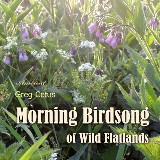 Morning Birdsong of Wild Flatlands
