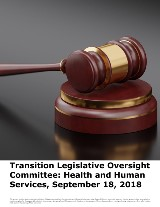 Transition Legislative Oversight Committee: Health and Human Services