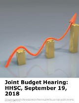 Joint Budget Hearing: Health and Human Services Commission