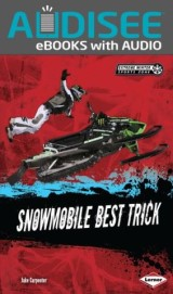 Snowmobile Best Trick