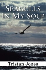 Seagulls in My Soup