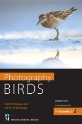 Photography Birds