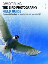 Bird Photography Field Guide