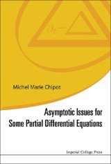 Asymptotic Issues For Some Partial Differential Equations