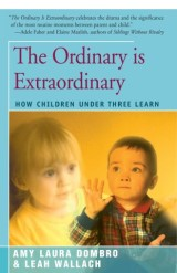The Ordinary is Extraordinary