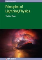 Principles of Lightning Physics