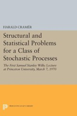 Structural and Statistical Problems for a Class of Stochastic Processes