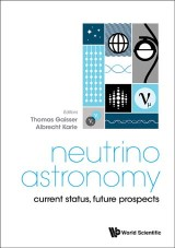 Neutrino Astronomy: Current Status, Future Prospects