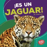 ¡Es un jaguar! (It's a Jaguar!)