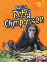 Meet a Baby Chimpanzee