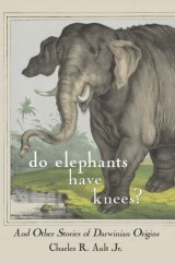 Do Elephants Have Knees?