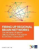 Firing Up Regional Brain Networks