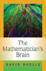 The Mathematician's Brain