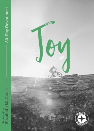 Joy: Food for the Journey - Themes