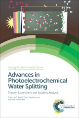 Advances in Photoelectrochemical Water Splitting