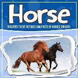 Horse: Discover These Pictures And Facts Of Horses For Kids
