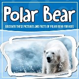 Polar Bear: Discover These Pictures And Facts Of Polar Bear For Kids