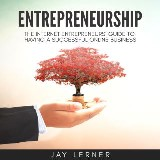 Entrepreneurship: The Internet Entrepreneurs Guide to Having a Successful Online Business