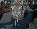 Dragon Walk