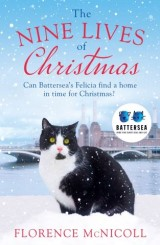 The Nine Lives of Christmas: Can Battersea's Felicia find a home in time for the holidays?