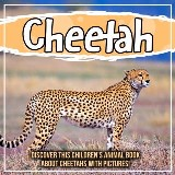 Cheetah: Discover This Children's Animal Book About Cheetahs With Pictures!
