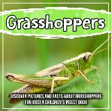 Grasshoppers: Discover Pictures and Facts About Grasshoppers For Kids! A Children's Insect Book