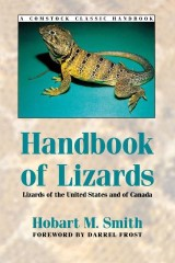 Handbook of Lizards