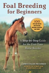 Foal Breeding for Beginners