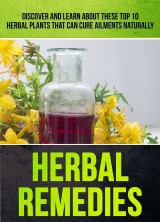 Herbal Remedies: Discover And Learn About These Top 10 Herbal Plants That Can Cure Ailments Naturally
