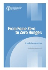 From Fome Zero to Zero Hunger
