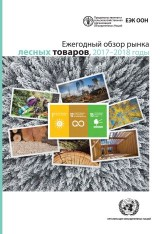 Forest Products Annual Market Review 2017-2018 (Russian language)
