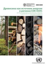 Wood Energy in the ECE Region (Russian language)